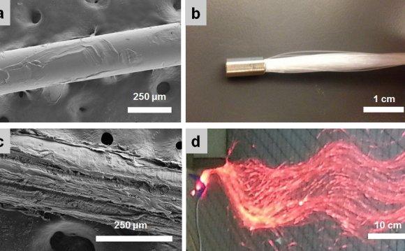 Fig. 3 (a) Unabraded fiber