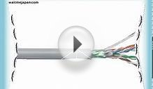 1 Ft Cat5 Cat5e Grey STP Shielded Network Bulk Cable